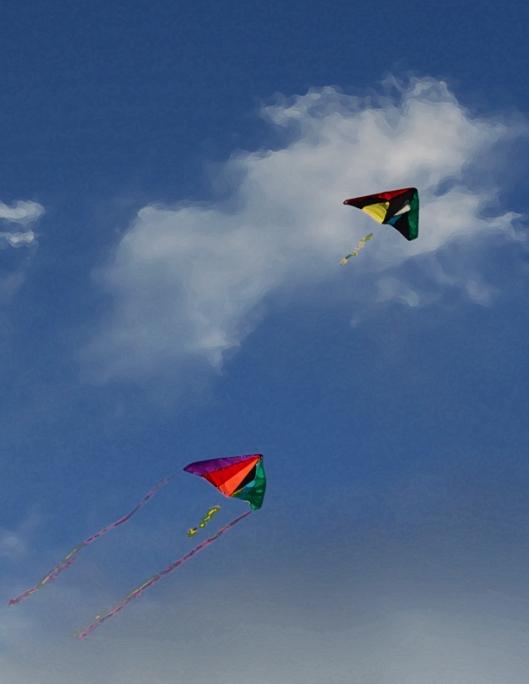 kites 8x11